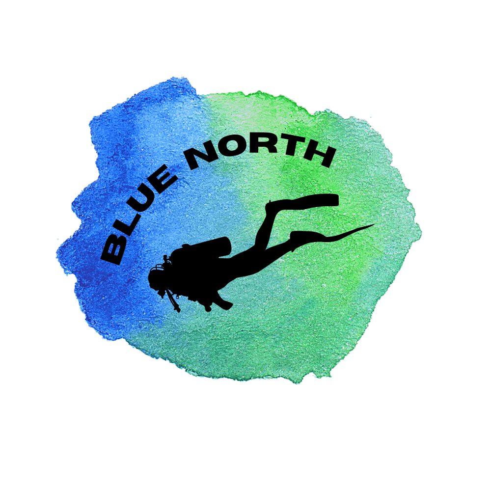 Logo for Blue North