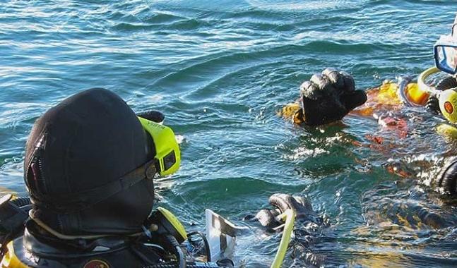 scuba divers at surface