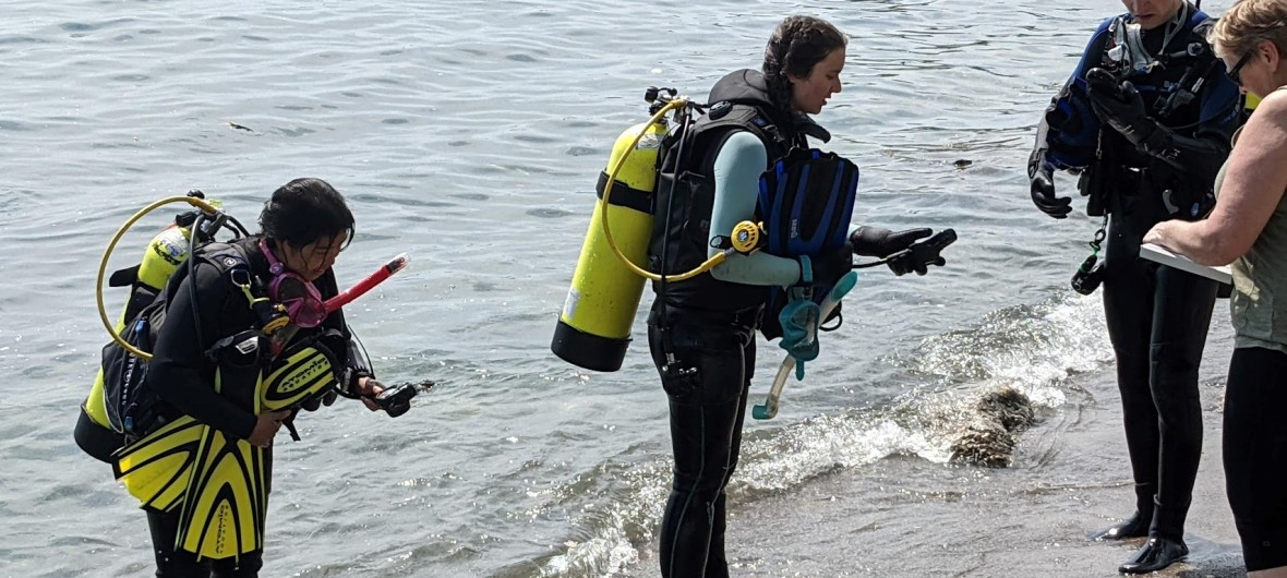 Scuba divers reporting their time and pressure to the Divemaster after the dive